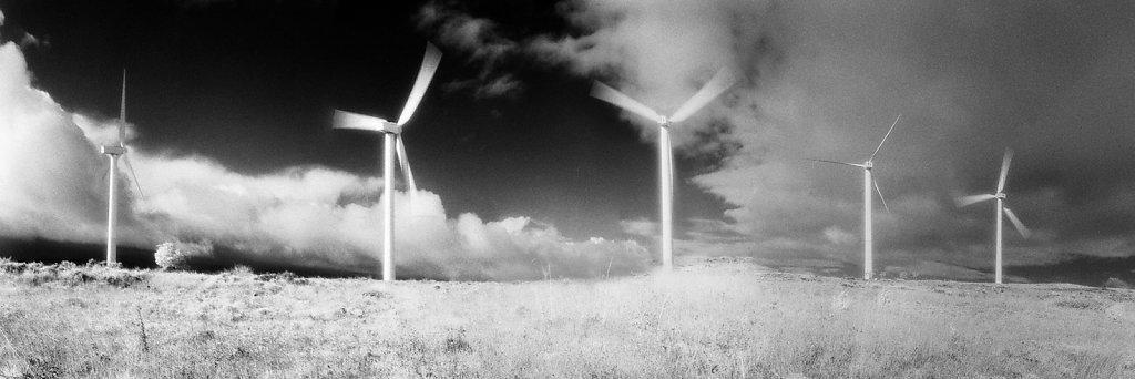 Le vent nous portera